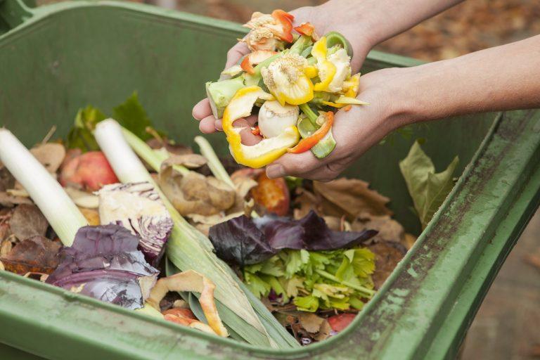 La segunda vida de los residuos orgánicos: energía verde