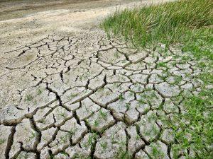Lee más sobre el artículo Efectos económicos del cambio climático en España: nuestro rating amenazado